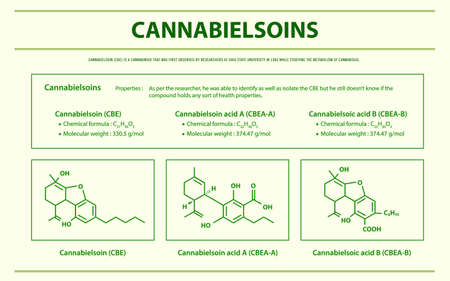 Cannabielsoin CBE with Structural Formulas in Cannabis horizontal infographic illustration about cannabis as herbal alternative medicine and chemical therapy, healthcare and medical science vector. 向量圖像