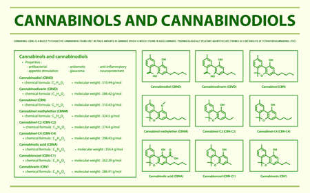 Cannabinol and Cannabinodiol CBN with Structural Formulas in Cannabis horizontal infographic illustration about cannabis as herbal alternative medicine and chemical therapy, healthcare and medical science vector. 向量圖像