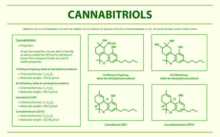Cannabitriol with Structural Formulas in Cannabis horizontal infographic illustration about cannabis as herbal alternative medicine and chemical therapy, healthcare and medical science vector.