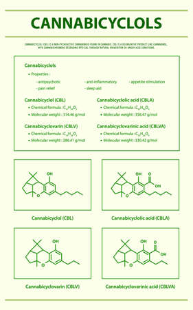 Cannabicyclol CBL with Structural Formulas in Cannabis vertical infographic illustration about cannabis as herbal alternative medicine and chemical therapy, healthcare and medical science vector. 向量圖像