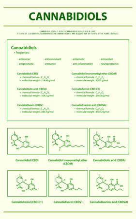 Cannabidiols CBD with Structural Formulas in Cannabis vertical infographic illustration about cannabis as herbal alternative medicine and chemical therapy, healthcare and medical science vector.