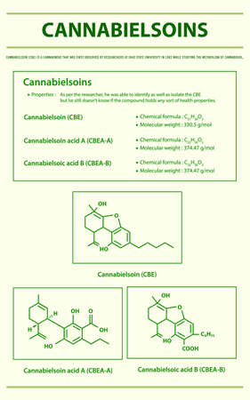 Cannabielsoin CBE with Structural Formulas in Cannabis vertical infographic illustration about cannabis as herbal alternative medicine and chemical therapy, healthcare and medical science vector.