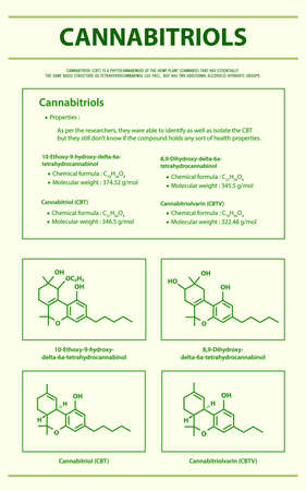 Cannabitriol CBT with Structural Formulas in Cannabis vertical infographic illustration about cannabis as herbal alternative medicine and chemical therapy, healthcare and medical science vector. 向量圖像