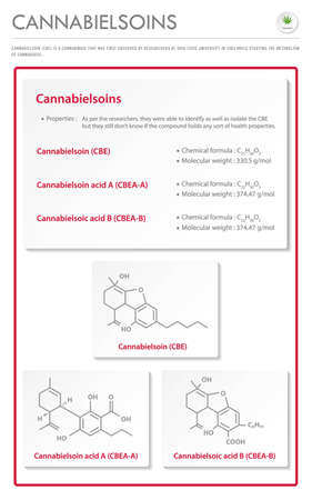 Cannabielsoin CBE with Structural Formulas in Cannabis vertical business infographic illustration about cannabis as herbal alternative medicine and chemical therapy, healthcare and medical science vector.