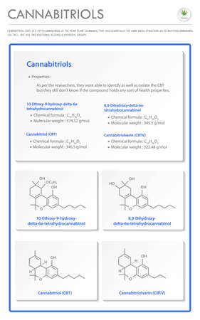 Cannabitriol CBT with Structural Formulas in Cannabis vertical business infographic illustration about cannabis as herbal alternative medicine and chemical therapy, healthcare and medical science vector.
