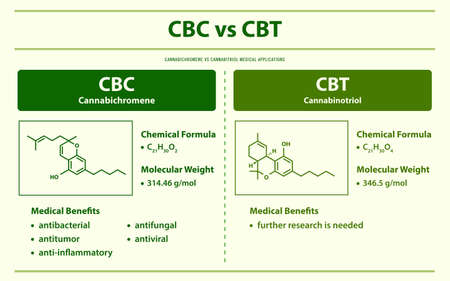 CBC vs CBT, Cannabichromene vs Cannabitriol horizontal infographic illustration about cannabis as herbal alternative medicine and chemical therapy, healthcare and medical science vector.