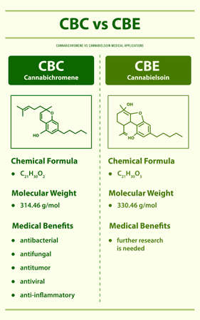 CBC vs CBE, Cannabichromene vs Cannabielsoin vertical infographic illustration about cannabis as herbal alternative medicine and chemical therapy, healthcare and medical science vector. Ilustração