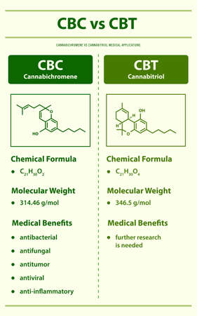 CBC vs CBT, Cannabichromene vs Cannabitriol vertical infographic illustration about cannabis as herbal alternative medicine and chemical therapy, healthcare and medical science vector.