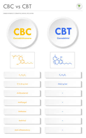 CBC vs CBT, Cannabichromene vs Cannabitriol vertical business infographic illustration about cannabis as herbal alternative medicine and chemical therapy, healthcare and medical science vector.
