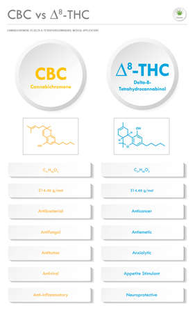 CBC vs ∆8-THC, Cannabichromene vs Delta 8 Tetrahydrocannabinol vertical business infographic illustration about cannabis as herbal alternative medicine and chemical therapy, healthcare and medical science vector.