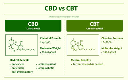 CBD vs CBT, Cannabidiol vs Cannabitriol horizontal infographic illustration about cannabis as herbal alternative medicine and chemical therapy, healthcare and medical science vector.