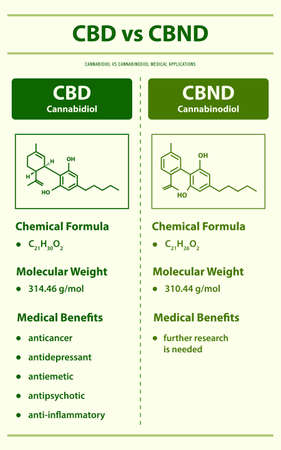 CBD vs CBND, Cannabidiol vs Cannabinodiol vertical infographic illustration about cannabis as herbal alternative medicine and chemical therapy, healthcare and medical science vector. Ilustração