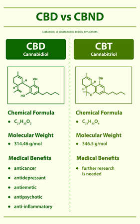CBD vs CBT, Cannabidiol vs Cannabitriol vertical infographic illustration about cannabis as herbal alternative medicine and chemical therapy, healthcare and medical science vector.