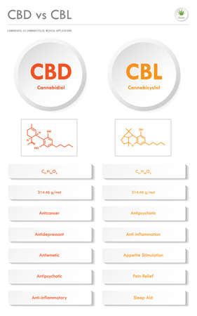CBD vs CBL, Cannabidiol vs Cannabicyclol vertical business infographic illustration about cannabis as herbal alternative medicine and chemical therapy, healthcare and medical science vector.