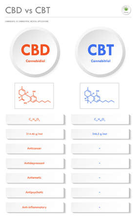 CBD vs CBT, Cannabidiol vs Cannabitriol vertical business infographic illustration about cannabis as herbal alternative medicine and chemical therapy, healthcare and medical science vector.