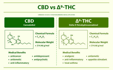 CBD vs ∆9-THC, Cannabidiol vs Delta 9 Tetrahydrocannabinol horizontal infographic illustration about cannabis as herbal alternative medicine and chemical therapy, healthcare and medical science vector. 矢量图像