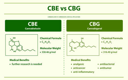 CBE vs CBG, Cannabielsoin vs Cannabigerol horizontal infographic illustration about cannabis as herbal alternative medicine and chemical therapy, healthcare and medical science vector.