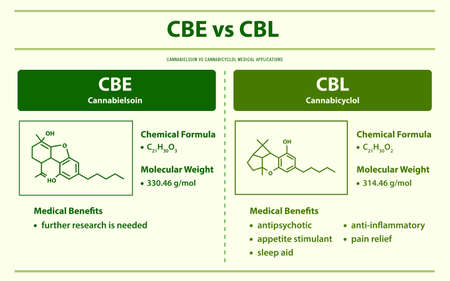 CBE vs CBL, Cannabielsoin vs Cannabicyclol horizontal infographic illustration about cannabis as herbal alternative medicine and chemical therapy, healthcare and medical science vector. Ilustração