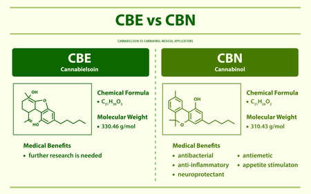 CBE vs CBN, Cannabielsoin vs Cannabinol horizontal infographic illustration about cannabis as herbal alternative medicine and chemical therapy, healthcare and medical science vector. Ilustração
