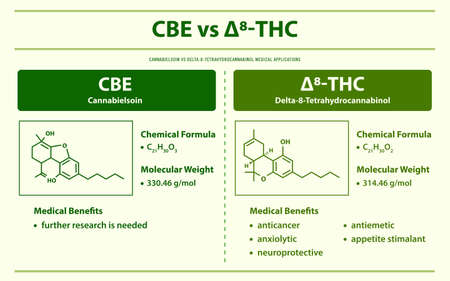CBE vs ∆8-THC, Cannabielsoin vs Delta 8 Tetrahydrocannabinol horizontal infographic illustration about cannabis as herbal alternative medicine and chemical therapy, healthcare and medical science vector.