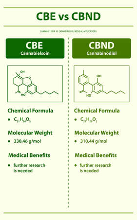 CBE vs ∆9-THC, Cannabisoin vs Delta 9 Tetrahydrocannabinol vertical infographic illustration about cannabis as herbal alternative medicine and chemical therapy, healthcare and medical science vector.
