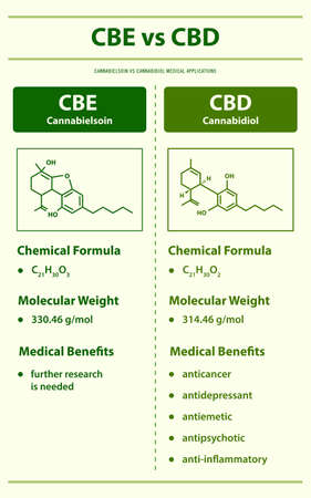 CBL vs CBD, Cannabicyclol vs Cannabidiol vertical infographic illustration about cannabis as herbal alternative medicine and chemical therapy, healthcare and medical science vector.
