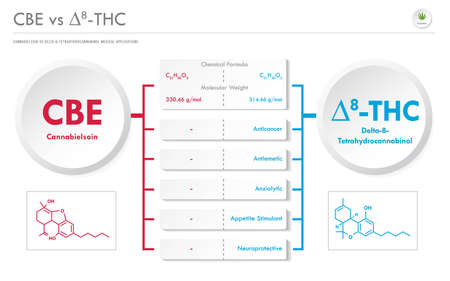 CBE vs ∆8-THC, Cannabielsoin vs Delta 8 Tetrahydrocannabinol horizontal business infographic illustration about cannabis as herbal alternative medicine and chemical therapy, healthcare and medical science vector.