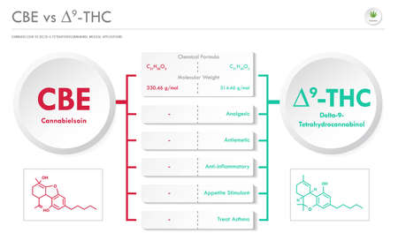 CBE vs ∆9-THC, Cannabichromene vs Delta 9 Tetrahydrocannabinol horizontal business infographic illustration about cannabis as herbal alternative medicine and chemical therapy, healthcare and medical science vector.