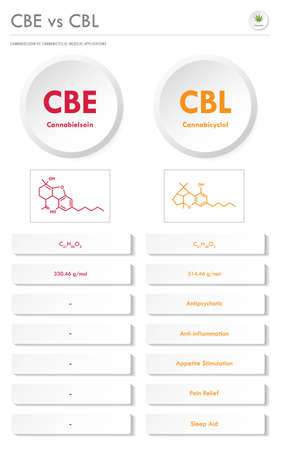 CBE vs CBL, Cannabielsoin vs Cannabicyclol vertical business infographic illustration about cannabis as herbal alternative medicine and chemical therapy, healthcare and medical science vector.