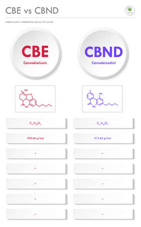 CBE vs CBND, Cannabielsoin vs Cannabinodiol vertical business infographic illustration about cannabis as herbal alternative medicine and chemical therapy, healthcare and medical science vector.