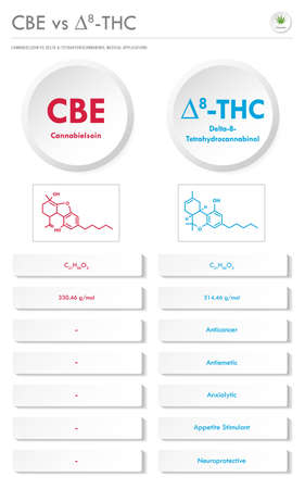 CBE vs ∆8-THC, Cannabielsoin vs Delta 8 Tetrahydrocannabinol vertical business infographic illustration about cannabis as herbal alternative medicine and chemical therapy, healthcare and medical science vector.