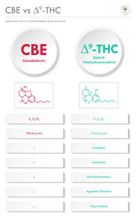 CBE vs ∆9-THC, Cannabielsoin vs Delta 9 Tetrahydrocannabinol vertical business infographic illustration about cannabis as herbal alternative medicine and chemical therapy, healthcare and medical science vector.