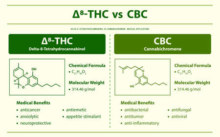 ∆8-THC vs CBC, Delta 8 Tetrahydrocannabinol vs Cannabichromene horizontal infographic illustration about cannabis as herbal alternative medicine and chemical therapy, healthcare and medical science vector.
