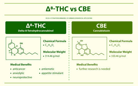 ∆8-THC vs CBE, Delta 8 Tetrahydrocannabinol vs Cannabielsoin horizontal infographic illustration about cannabis as herbal alternative medicine and chemical therapy, healthcare and medical science vector.