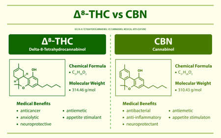 ∆8-THC vs CBN, Delta 8 Tetrahydrocannabinol vs Cannabinol horizontal infographic illustration about cannabis as herbal alternative medicine and chemical therapy, healthcare and medical science vector.