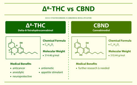∆8-THC vs CBND, Delta 8 Tetrahydrocannabinol vs Cannabinodiol horizontal infographic illustration about cannabis as herbal alternative medicine and chemical therapy, healthcare and medical science vector.
