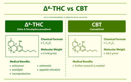 ∆8-THC vs CBT, Delta 8 Tetrahydrocannabinol vs Cannabitriol horizontal infographic illustration about cannabis as herbal alternative medicine and chemical therapy, healthcare and medical science vector.