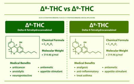 ∆8-THC vs ∆9-THC, Delta 8 Tetrahydrocannabinol vs Delta 9 Tetrahydrocannabinol horizontal infographic illustration about cannabis as herbal alternative medicine and chemical therapy, healthcare and medical science vector.
