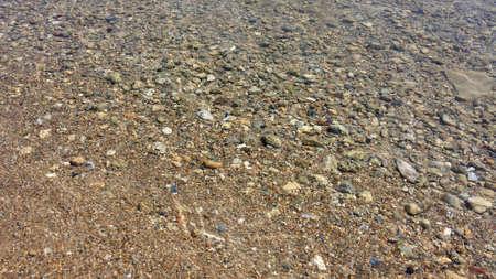 fond marin: Fonds rocheux