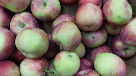 polish: polish apples Stock Photo