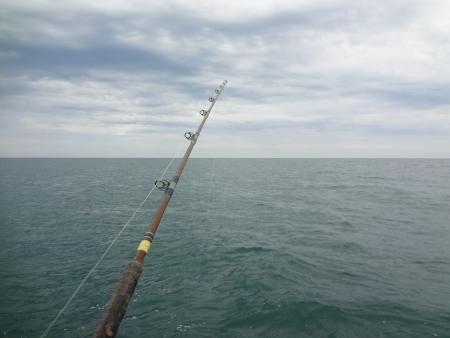 rocky point: Canna da pesca a Rocky Point