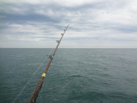 Fishing rod at Rocky Point