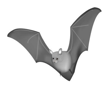 drakula: Bat