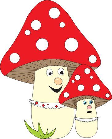 edible mushroom: Mushroom Stock Photo