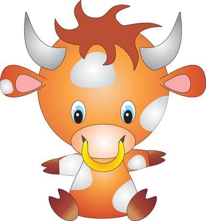 bull rings: Bull