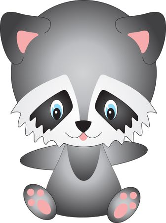 Raccoon Stock Photo - 4951209