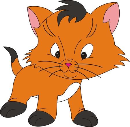 bigodes: Cat vector