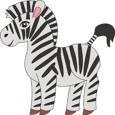 herbivorous animals: Zebra vector