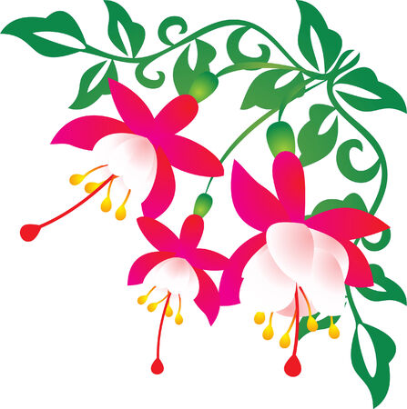 Flower vector Stock Vector - 5505217