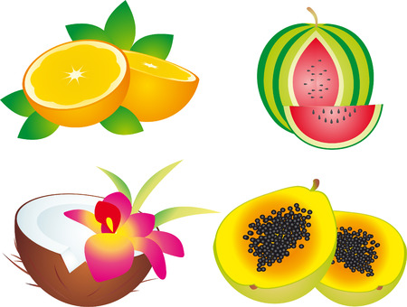 fruits Stock Vector - 5910392